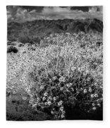 Wild Desert Flowers Blooming In Black And White In The Anza-borrego Desert State Park Fleece Blanket
