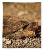 Wild Desert Tortoise Saguaro National Park Fleece Blanket