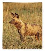 Wild Dog Of Botswana Fleece Blanket