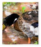 Wild Duck Mallard 1 Fleece Blanket