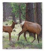 Wild Elk Baby And Mom Fleece Blanket