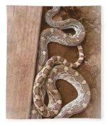 Wild Friendly Gopher Snake Fleece Blanket