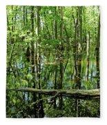 Wild Goose Woods Pond Iv Fleece Blanket
