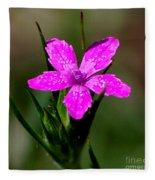 Wild Pink Fleece Blanket