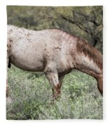 Wild Roan Stallion  Fleece Blanket