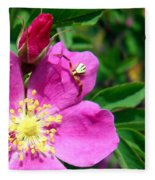 Wild Rose And The Spider Fleece Blanket