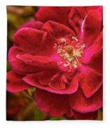 Wild Rose As Oil Fleece Blanket