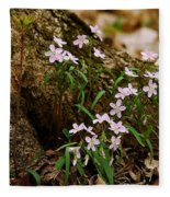 Wild Spring Beauty Fleece Blanket