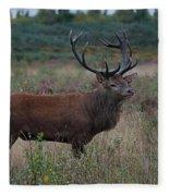 Wild Stag Fleece Blanket