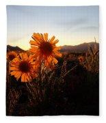 Wild Sunflowers Of Buena Vista Fleece Blanket