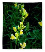 Wild Yellow Flowers On Black Background Fleece Blanket