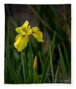 Wild Yellow Iris Fleece Blanket