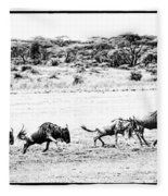 Wildebeest On The Move Fleece Blanket