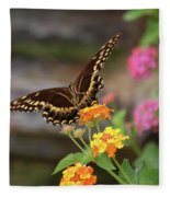 Wildflower Swallowtail Fleece Blanket