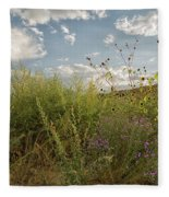 Wildflowers Of Chaco Fleece Blanket