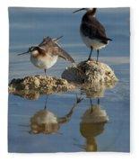 Wildons Phalaropes Fleece Blanket