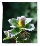 Willow Flower Fleece Blanket