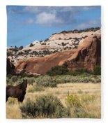 Wilson Arch Fleece Blanket