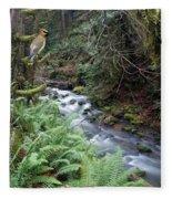 Wilson Creek #14 With Added Cedar Waxwing Fleece Blanket
