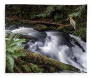Wilson Creek #18 With Added Cedar Waxwing Fleece Blanket