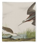 Wilson's Phalarope Fleece Blanket