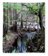 Winding Sopchoppy River Fleece Blanket