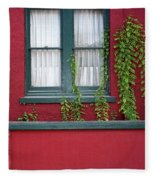 Window And Vines Fleece Blanket