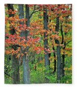 Windy Day Autumn Colors Fleece Blanket