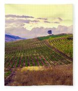 Wine Vineyard In Sicily Fleece Blanket