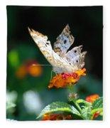 Winged Butter Fleece Blanket