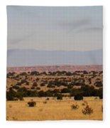 Winslow Arizona Fleece Blanket