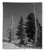 Winter Alpine Trees, Mount Rainier National Park, Washington, 2016 Fleece Blanket