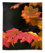 Winter Approaches... Fleece Blanket
