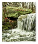 Winter Beauty Fleece Blanket