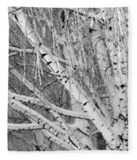 Icy Winter Birch Tree  Fleece Blanket