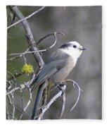 Winter Bird  Fleece Blanket