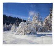 Winter Blanket Fleece Blanket