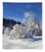 Winter Blanket Fleece Blanket