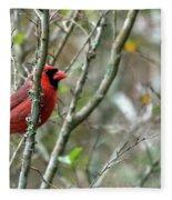 Winter Cardinal Sits On Tree Branch Fleece Blanket
