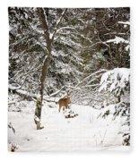 Winter Doe In The Upper Peninsula Fleece Blanket