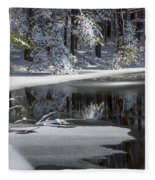 Winter Fresh Fleece Blanket