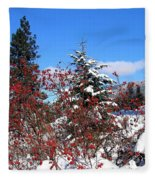 Winter Haven Fleece Blanket
