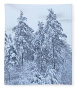 Winter In Maine 2017 Fleece Blanket