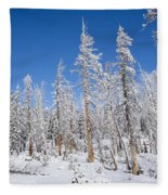 Winter Fleece Blanket