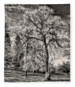 Winter Marches On Polaroid Fleece Blanket