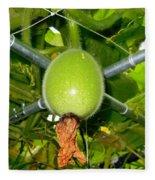 Winter Melon In Garden 1 Fleece Blanket