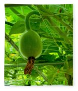 Winter Melon In Garden 3 Fleece Blanket