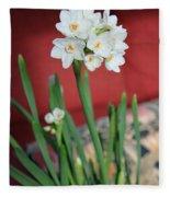Winter Narcissus II Fleece Blanket