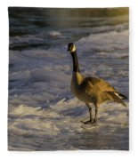 Winter On The River Fleece Blanket