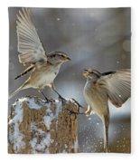 Winter Quarrel Fleece Blanket
